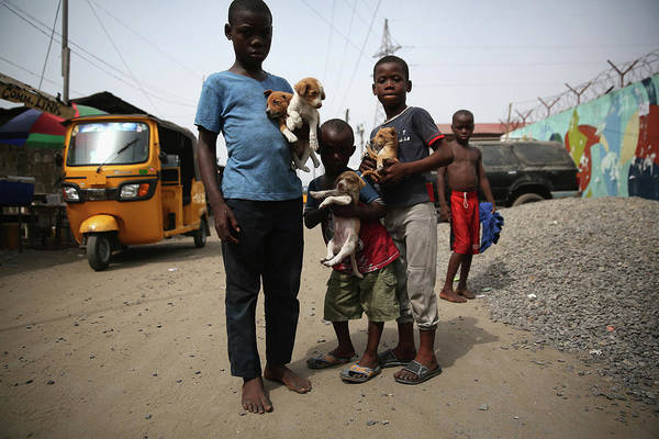 Photograph - Ebola Epidemic Over, Liberias West by John Moore