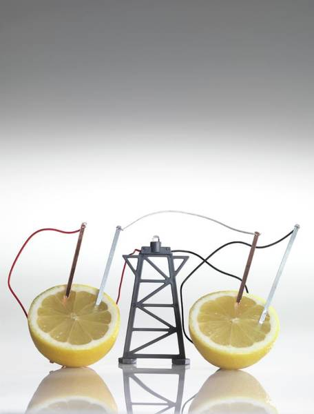 Wall Art - Photograph - Electrical Circuit With Lemons by Tek Image/science Photo Library
