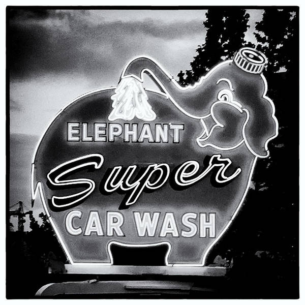 Car Wash Photograph - Elephant Car Wash by Tanya Harrison