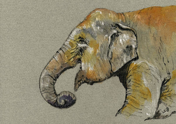 Bath Painting - Elephant Indian by Juan  Bosco