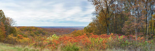 Brown County State Park Photograph - Elevated View Of Autumn Trees, Brown by Panoramic Images