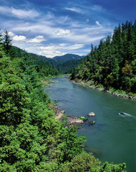 Rogue River Wall Art - Photograph - Elevated View Of River Passing by Panoramic Images