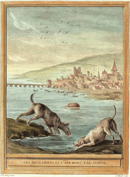 Chien Drawing - Elie Du Mesnil After Jean Baptiste Oudry French by Litz Collection