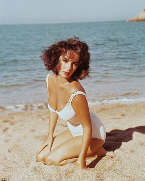 Last Photograph - Elizabeth Taylor In Suddenly, Last Summer  by Silver Screen