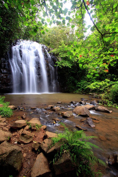 Far North Queensland Wall Art - Photograph - Ellinjaa Falls Is One Of Three Scenic by Paul Dymond