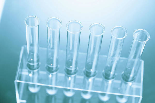 Wall Art - Photograph - Empty Tubes In A Test Tube Rack by Wladimir Bulgar/science Photo Library