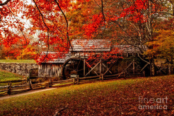 Photograph - Enchanted Autumn Morning At The Mill by Deborah Scannell