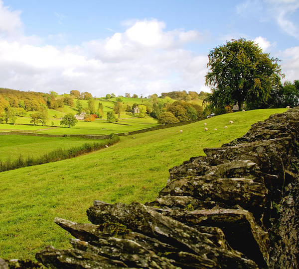 Near Photograph - England - Lake District by Carol Barrington - DestinationPh