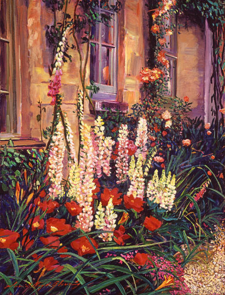 Great Britain Painting - English Cottage Garden by David Lloyd Glover
