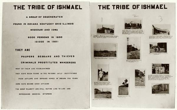 Tribe Photograph - Eugenics Research by American Philosophical Society