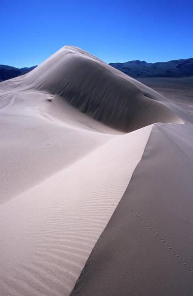 Great Sand Dunes National Park Photograph - Eureka Valley Sand Dunes by Karl Lehmann