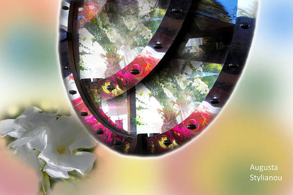 Digital Art - Exotic Flowers And Reflections by Augusta Stylianou