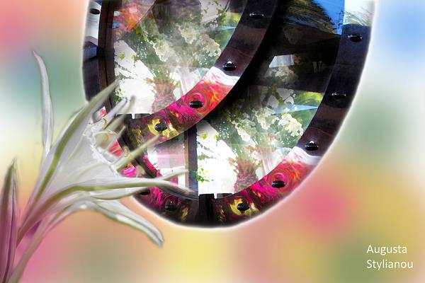 Digital Art - Exotic Flowers In Reflections by Augusta Stylianou