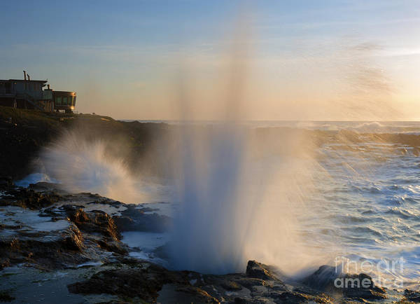 Blowhole Photograph - Explosion by Mike  Dawson