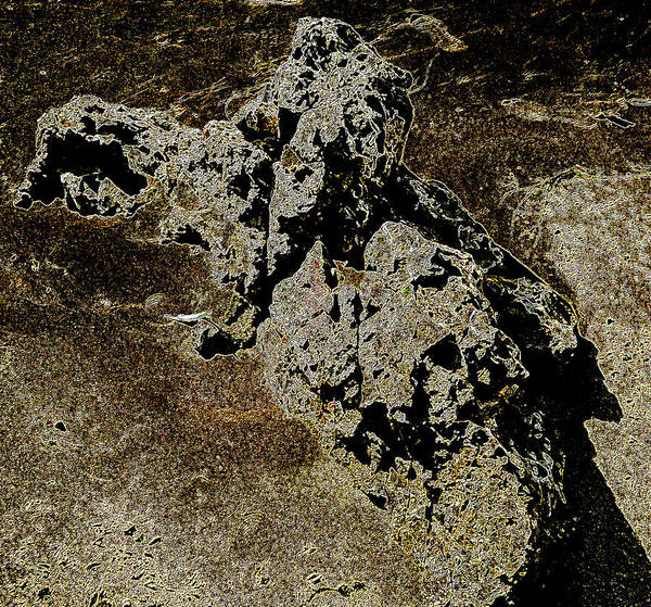 Photograph - Abstract Rock by Penny Lisowski
