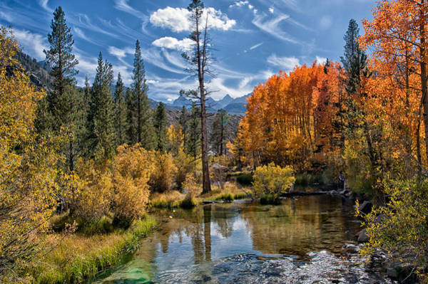Sierra Nevada Mountains Photograph - Fall At Bishop Creek by Cat Connor
