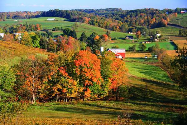 Berlin Ohio Photograph - Fall Colors In Ohio by Dan Sproul