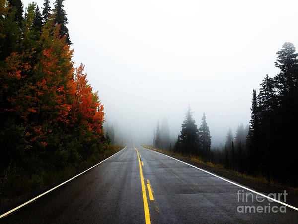 Art Print featuring the photograph Fall Drive by Kate Avery
