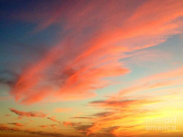 Photograph - Fall Sky by Bridgette Gomes