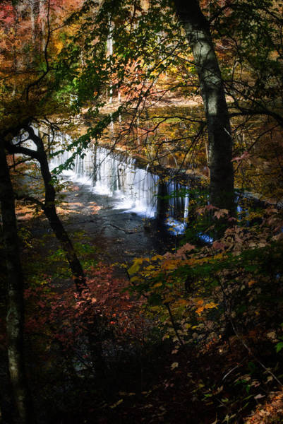 Photograph - Falls In The Fall by George Taylor