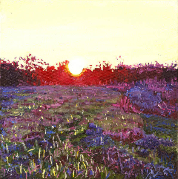 Sun Set Painting - Farley Sunset by Helen White