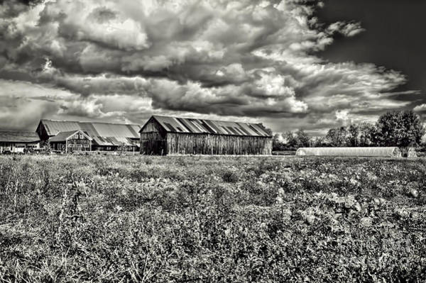 Wall Art - Photograph - Farm by HD Connelly