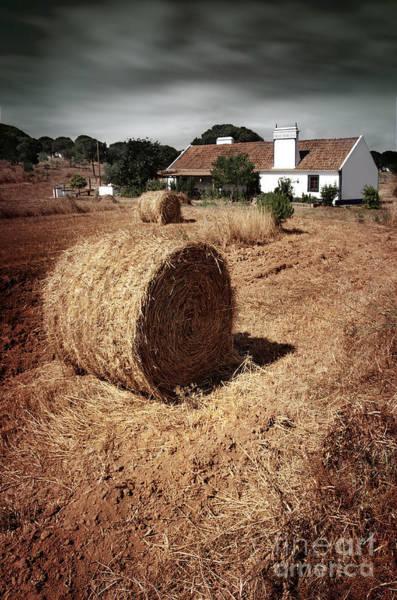 Wall Art - Photograph - Farmland by Carlos Caetano