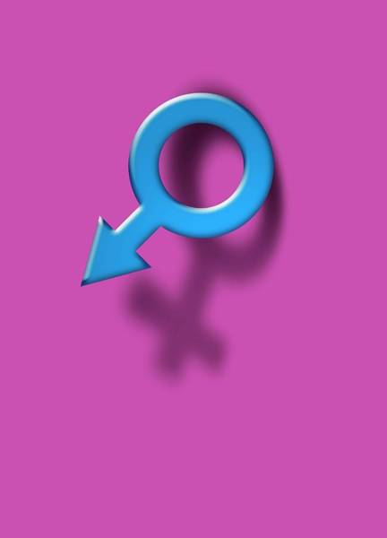 Transgender Photograph - Female And Male Symbols by Victor Habbick Visions/science Photo Library