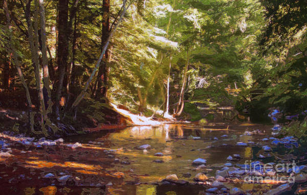Wall Art - Photograph - Fernwood  Creek Big Sur by Anthony Forster