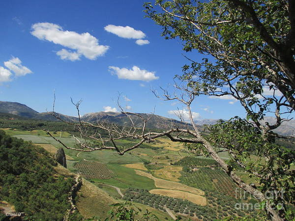 Photograph - Fields In Ronda by Chani Demuijlder