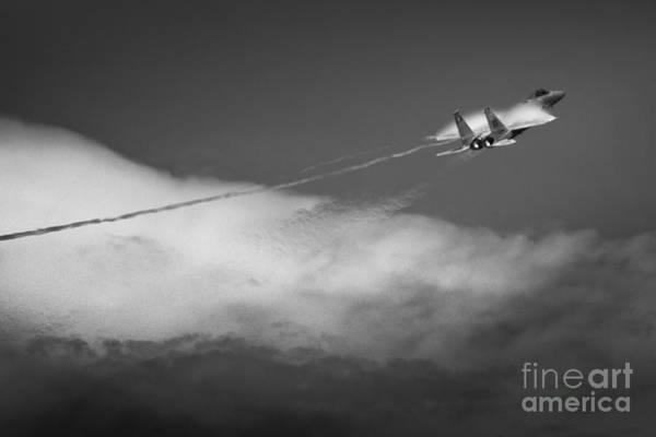 Photograph - Fighter by Ryan Heffron