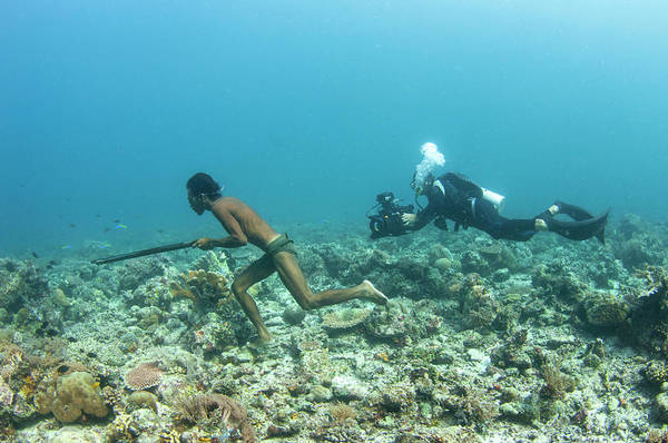 Cinematography Photograph - Filming Spear Fishing by Scubazoo/science Photo Library