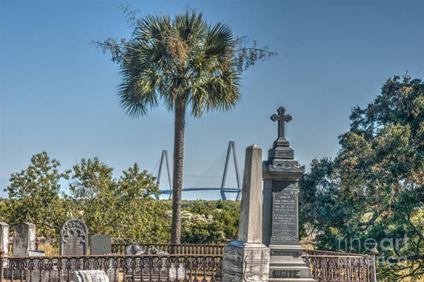 Photograph - Final Resting Place by Dale Powell
