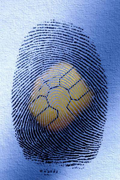 Wall Art - Photograph - Fingerprint Identification by Pascal Broze/reporters/science Photo Library
