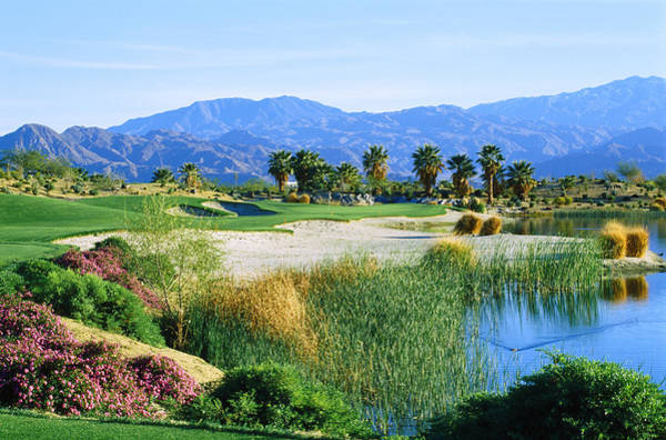 Riverside California Photograph - Firecliff Golf Course, Desert Willow by Panoramic Images