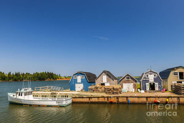 Wall Art - Photograph - Fishing Dock In Prince Edward Island  by Elena Elisseeva
