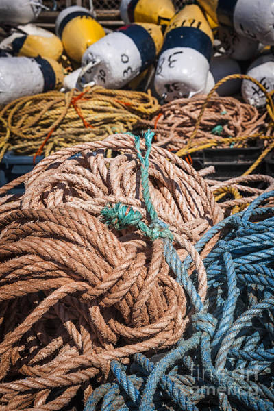 Wall Art - Photograph - Fishing Floats And Rope by Elena Elisseeva