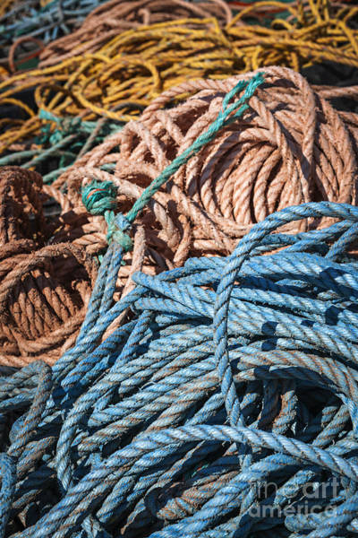 Wall Art - Photograph - Fishing Ropes by Elena Elisseeva