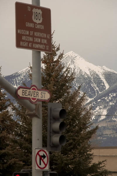 Photograph - Flagstaff Route 66 by Steven Lapkin
