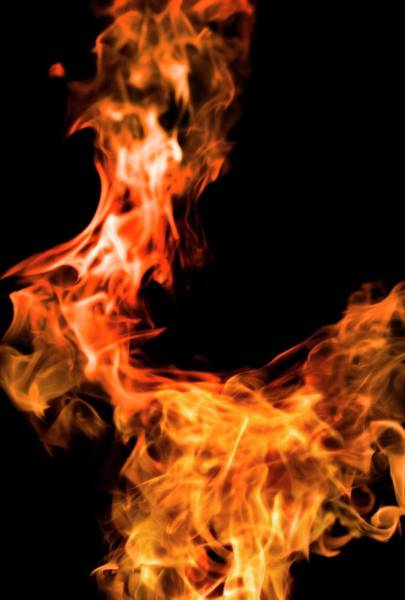 Wall Art - Photograph - Flames by Tim Vernon / Science Photo Library