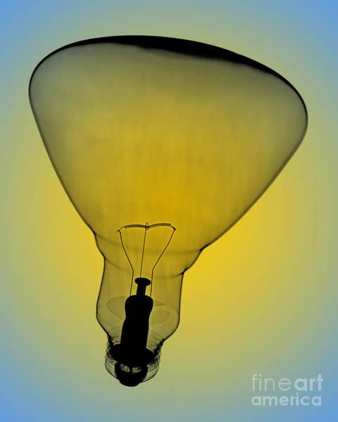 Photograph - Flood Bulb X-ray by Bert Myers