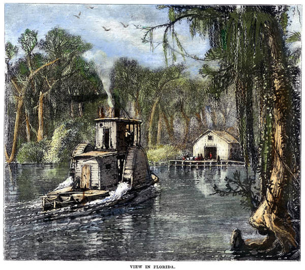 Riverboat Painting - Florida River Life by Granger