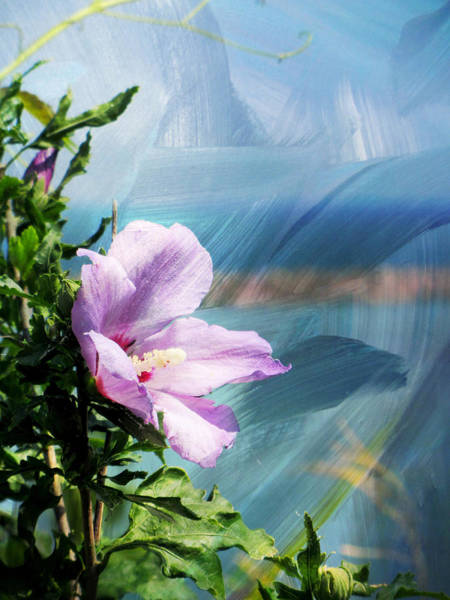 Digital Art - Flower And Abstract Paint by Anita Burgermeister