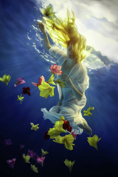 Float Wall Art - Photograph - Flower Fantasy by Dmitry Laudin