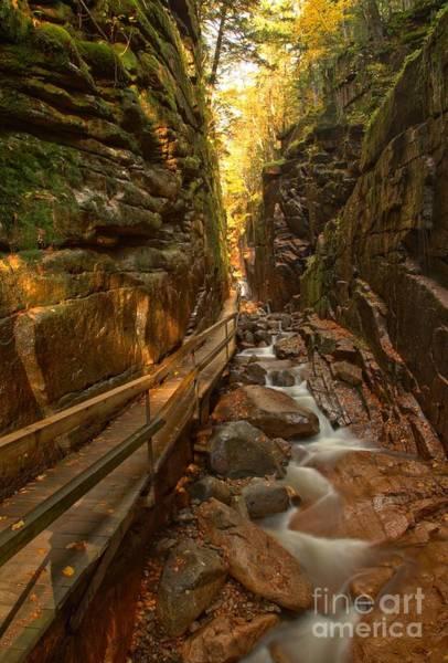 Photograph - Flume Gorge Boardwalk by Adam Jewell