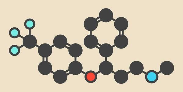 Psychiatry Photograph - Fluoxetine Antidepressant Drug Molecule by Molekuul