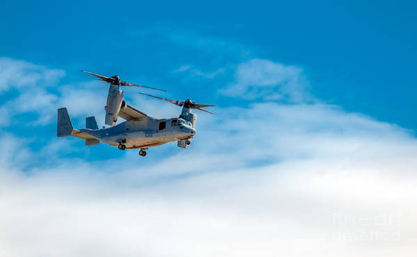 Mv-22 Photograph - Flying  Osprey by Robert Bales