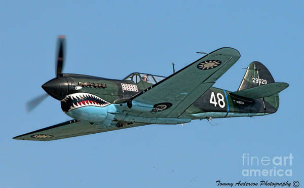 Wall Art - Photograph - Flying Tiger by Tommy Anderson