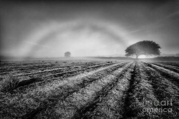 Wall Art - Photograph - Fog Bow by John Farnan