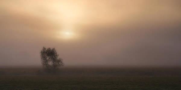 Photograph - Foggy Morn by Darylann Leonard Photography
